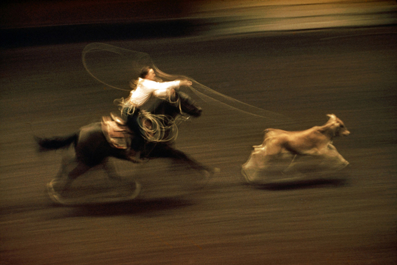 Ernst Haas-Rodeo, Madison Square garden, NYC